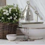 ۱۰ ایده جالب برای تبدیل وسایل دورریختنی به گلدان های آپارتمانی