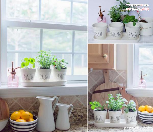 باغچه خانگی سبزیجات