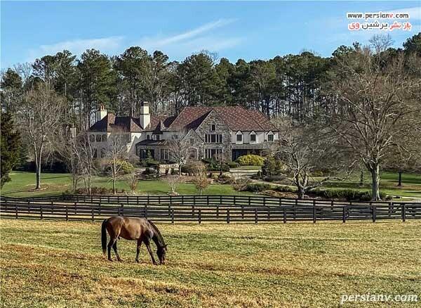 مزرعه اسب دواین جانسون