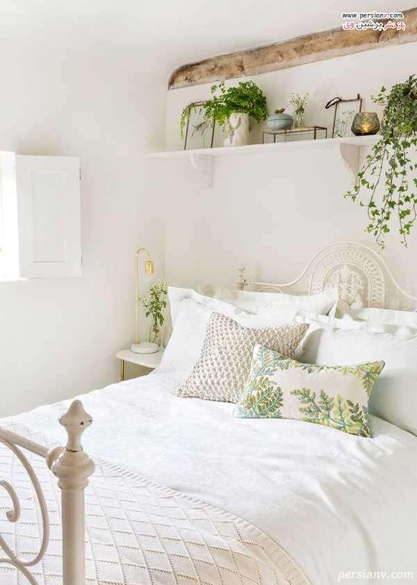 گلدان گیاهان سبز در اتاق خواب