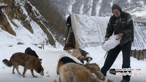 غارنشینی و زندگی متفاوت مرد بوسنیایی با 13 سگ ولگرد! +عکس