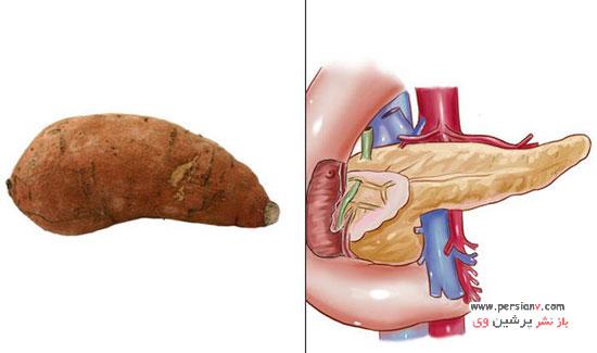مواد غذایی شبیه به اندام های بدن