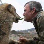 نارضایتی مرد غارنشین از زندگی بشری پس از سال ها زندگی با گرگ ها