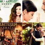 محبوب ترین سریال های ترکی را بشناسید