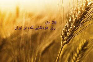 روز خودکفایی گندم در ایران در ۲۶ آبان