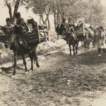 زمان قاجار و کاروان های زائربن مکه در آن زمان را ببینید