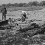 جنگ جهانی دوم به چه دلایلی آغاز شد؟ + تصاویر