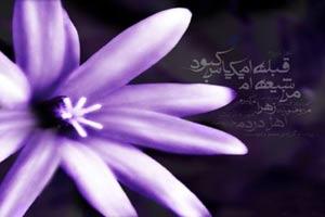 اشعاری در مدح حضرت زهرا (س)