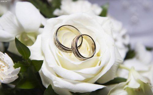 جریان وجود حلقه در مراسم ازدواج چیست ؟ / چرا حلقه در انگشت چپ باید قرار بگیرد؟
