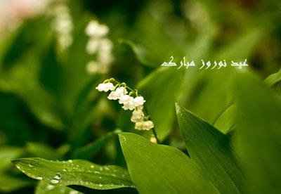 آداب و رسوم ایرانیان در عید نوروز چگونه است؟