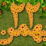 سرودهای زیبای دهه فجر و ۲۲ بهمن (۲)