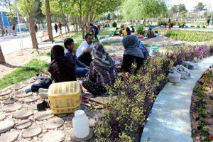 آداب و رسوم عید نوروز در کرمان