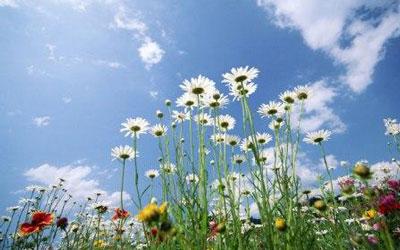 شعر نوبهار آمد و آورد گل و یاسمنا از منوچهری