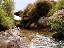 چشمه و سنگ شعری زیبا و خواندنی از نیمایوشیج