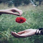 شعر دلم را از سر راه نیاورده ام از عادل دانتیسم