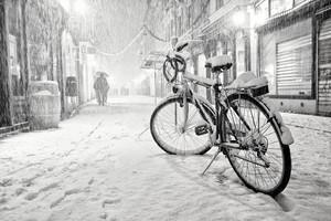 ارباب زمستان شعری زیبا از شهریار