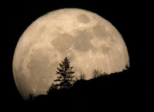 شعر یکشب با قمر از استاد شهریار