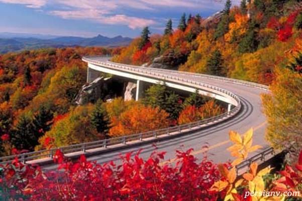زیباترین و خاصی ترین جاده های جهان