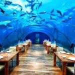 رستوران های مجلل زیر آب دریا
