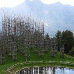 کلیسای درختی در ایتالیا +تصاویر