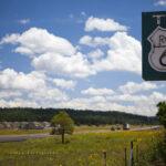 چشم اندازهای زیبای جاده ای در آمریکا