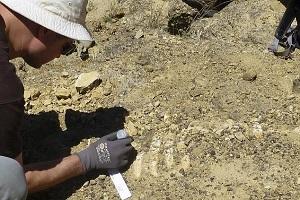 تغییر تاریخ بشریت با کشف دندان های ۸۰ هزار ساله در چین