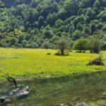 جنگل دوهزار تنکابن یک منطقه توریستی در خرم آباد