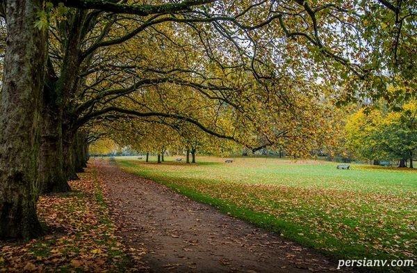 هاید پارک یکی از پارکهای سلطنتی لندن+تصاویر