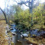 پاییز رنگارنگ روستای خانقاه +عکس