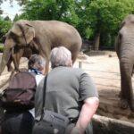 گردش در باغ وحش هامبورگ