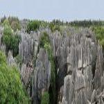 جنگل سنگی چین+تصاویر