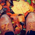 فوت و فن های عکاسی در فصل پاییز
