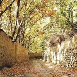 شهری در نزدیکی تهران که هنوز کوچه باغ دارد+تصاویر