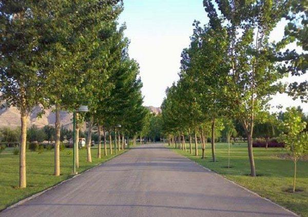 بهترین پارک های تهران / پارک گردی لذت بخش در تهران+تصاویر
