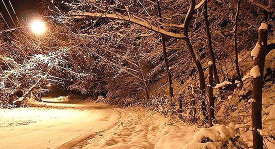 جنگل النگدره