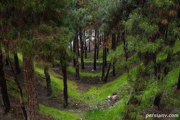 جاذبه های طبیعی تهران