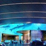 اولین هتل کاملا جنگلی جهان در دبی+تصاویر