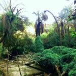 باغ خان خوزستان جایی که حتما باید دید