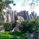جنگل سنگ شیلین یکی از زیباترین مکانهای طبیعی دنیا