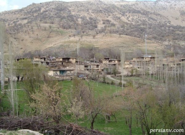 چشمه چنار