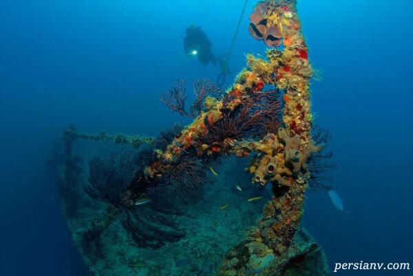 موزه ای در زیر آب