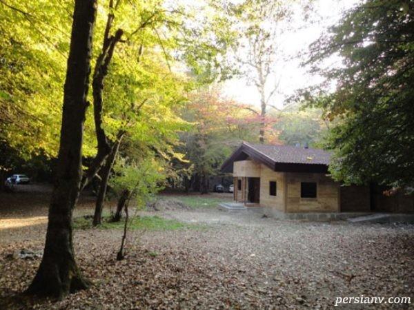 پارک جنگلی بسیار دیدنی بابلکنار که حتما باید ببینید