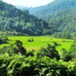 گشتی در زیبایی های دیدنی و جذاب روستای بکر اطرب