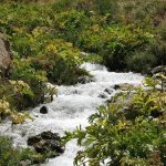 سفر به روستایی با طبیعت پاییزی بسیار رویایی نزدیک تهران را از دست ندهید+تصاویر