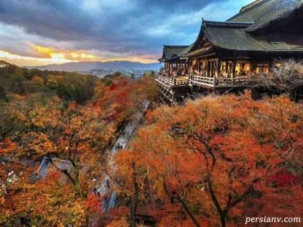 طبیعت پاییزی جهان