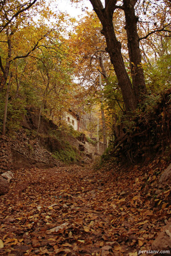 روستای کوهستانی برگ جهان
