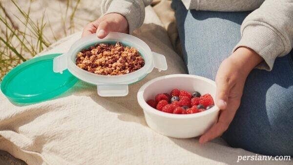 ظرف نگهدارنده غذا وسیله ای بسیار مناسب برای تفریح و سفر
