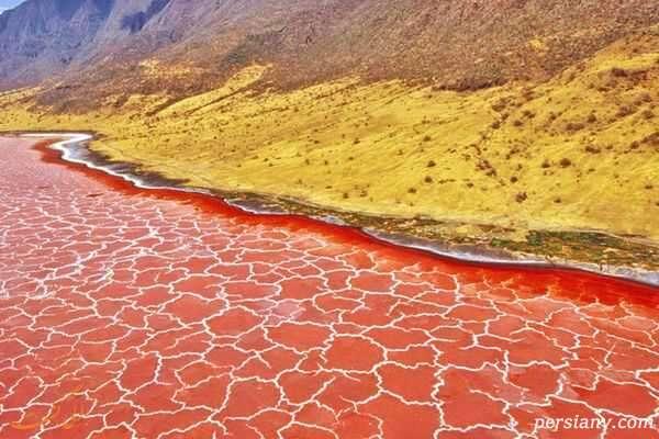 دریاچه نمک ناترون زیباترین نمک زار دنیا