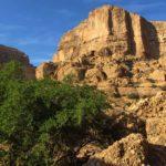 تنگوان مناظر ناب و بیبدیلی از طبیعت زیبای ایران در خوزستان