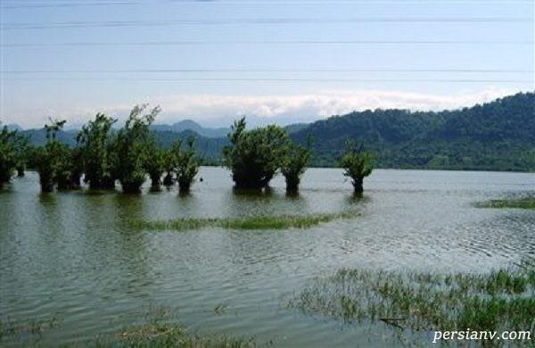 دریاچه استیل
